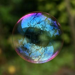¿Sabías que un pasatiempo de Elena Salgado es rehabilitar burbujas con casas dentro?