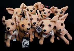 Los mismos perros con distintos collares