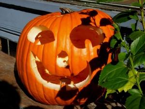 En Halloween dan calabazas al único índice con propia fiesta de difuntos