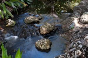 Las aguas vuelven a su cauce