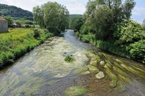 Cuando el río suena, agua lleva