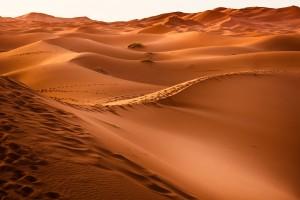 Tocaba dar la de arena y... ¡ale, chavales, a peregrinar por el desierto!